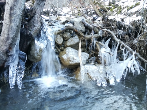 decouverte yakasurvie cascade glace